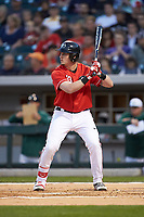 Daniel Nichols (33) of the Georgia Bulldogs at bat against the Charlotte 49ers at BB&T Ballpark on March 8, 2016 in Charlotte, North Carolina. The 49ers defeated the Bulldogs 15-4. (Brian Westerholt/Four Seam Images)
