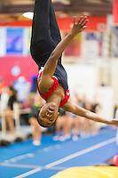 HGA Houston Gymnastics Academy