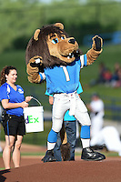 West Michigan Whitecaps guest mascot, Roary of the Detroit Lions, throws out the ceremonial first pitch before a game against the Great Lakes Loons on June 4, 2014 at Fifth Third Ballpark in Comstock Park, Michigan.  West Michigan defeated Great Lakes 4-1.  (Mike Janes/Four Seam Images)