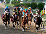 15 May 09: The field passes the stands fo rthe first time in the Black-Eyed Susan Stakes at Pimlico Race Course in Baltimore, Maryland