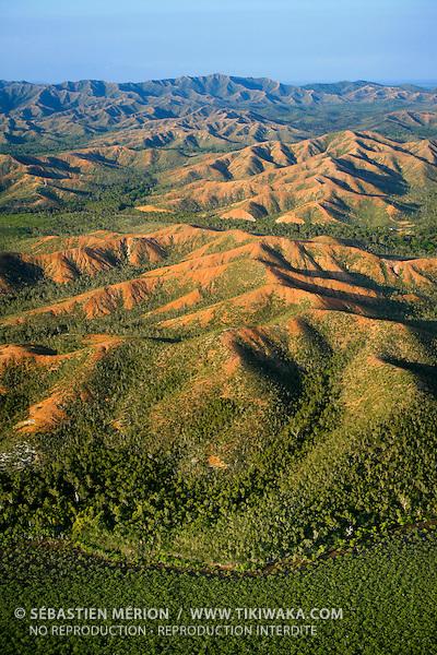 Paysage du Nord, mangrove, région de Poum, Nouvelle-Calédonie