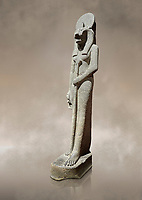 "Ancient Egyptian statue of goddess Sekhmet, grandodiorite, New Kingdom, 18th & 20thDynasty (1390-1150 BC), Thebes. Egyptian Museum, Turin. Grey Background.<br /> <br /> This statue is unfinished and is in the stage before polishing. Sekhmet, ""the Powerful One"" was a fearsome goddess symbolised by her lioness head. Daughter of the sun she personifies the disk of the world during the day. Sekhmet is the angry manifestation of Hathor inflicting the scourges of summer heat, famine and illness which is why the goddess needed to be exorcised every day. Drovetti Collection. C 264"