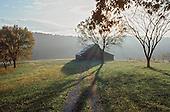 Barn in pasture in morning haze
