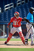 Washington Nationals catcher Onix Vega (19) tags Dalvy Rosario to complete the strikeout during an Instructional League game against the Miami Marlins on September 26, 2019 at FITTEAM Ballpark of The Palm Beaches in Palm Beach, Florida.  (Mike Janes/Four Seam Images)