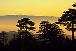 Sunrise over Linguaglossa, Sicily, march 2008.