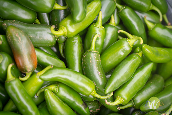 Southland Farmers Market. Jalapeno peppers.