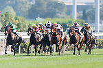 Jockeys competing during the Race 7 Audemars Piguet Lady Millenary Handicap at Sha Tin Racecourse on April 30, 2017 in Hong Kong, China. (Photo by Marcio Rodrigo Machado / Power Sport Images)