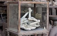 Il corpo pietrificati di un cane morto nell'eruzione del Vesuvio del 79 d.C., nel sito archeologico di Pompei, nei pressi di Napoli.<br /> Plaster cast of a dead dog at Pompeii's archeological roman site, near Naples.<br /> UPDATE IMAGES PRESS/Riccardo De Luca