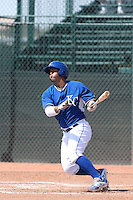 Cheslor Cuthbert #7 of the Kansas City Royals bats during a Minor League Spring Training Game against the San Diego Padres at the Kansas City Royals Spring Training Complex on March 26, 2014 in Surprise, Arizona. (Larry Goren/Four Seam Images)