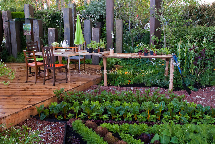 Vegetable Garden and Backyard Deck with ornamental edibles