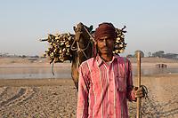 Cameleer bringing his camels across the Chambal River that separates Uttar Pradesh from Madya Pradesh in India