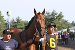 August 2, 2015. Keen Ice, trained by Dale Romans, walks to the paddock before the  Grade I William Hill Haskell Invitational Stakes, one and 1/8 miles on the dirt  for three year olds at Monmouth Park in Oceanport, NJ.  Joan Fairman Kanes/ESW/CSM