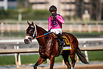 September 26, 2020:  Get Her Number with Flavien Prat wins the American Pharoah Stakes at Santa Anita Park, in Arcadia, California on September 26, 2020.  Evers/Eclipse Sportswire/CSM
