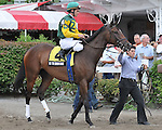 8.12.10 Intedomine in the post parade for the New York Stallion Series - Statue of Liberty Division