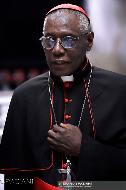 Cardinal  Robert Sarah,Pope Francis leads a consistory for the creation of five new cardinals  at St Peter's basilica in Vatican.  from countries  : El Salvador, Laos, Mali,Sweden and Spain.<br /> Cardinal Gregorio Rosa Chavez from Salvador;Cardinal Louis-Marie Ling Mangkhanekhoun from Laos;Cardinal Anders Arborelius from Sweden;Cardinal Jean Zerbo from Mali;Cardinal Juan José Omella of Spainon June 28, 2017