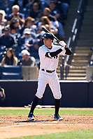 New York Yankees Zack Granite (74) bats during a Spring Training game against the Toronto Blue Jays on February 22, 2020 at the George M. Steinbrenner Field in Tampa, Florida.  (Mike Janes/Four Seam Images)