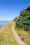 Bluff Trail Over Strait of Juan de Fuca.   Fort Ebey State Park.  Whibey Island, WA.  Boulders and surf.