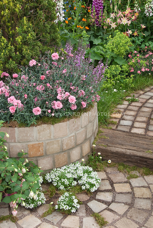 Raised garden bed of Dianthus, with fuchsia, Digitalis, Alchemilla, Aquilegia, Lobularia sweet alyssum, brick pathway, patio garden