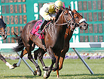 July 27, 2014: #8 Guys Reward, Paco Lopez up, wins the Gr. III Metropolitan Jets Oceanport Stakes at Monmouth Park in Oceanport, NJ.  Trainer is Dale Romans; owner is Michael J. Bruder. ©Joan Fairman Kanes/ESW/CSM