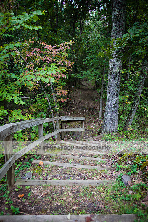 """Forest trail alongside the """"Unfinished Railroad"""" at Manassas National Battlefield Park in Virginia."""