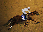 Nov.5, 2011.Drosselmeyer ridden by Mike Smith and trained by William I. Mott wins the Breeders' Cup Classic at Churchill Downs, Louisville, KY