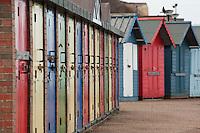 Beach huts on the Norfolk sea coast, Cromer, Norfolk.