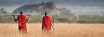 Masaai warriors wearing red shukas gazing across the open grassland of the Serengeti National Park, Tanzania.