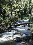 Chiquito Creek camping