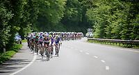 Tour of Luxemburg 2012.stage2.Schifflange - Leudelange: 184km.