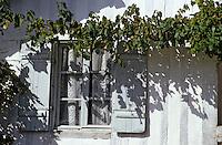 Europe/France/Aquitaine/40/Landes/Parc Naturel Régional des Landes de Gascogne/Marquèze (écomusée de la Grande Lande): La maison de maître détail fenètre