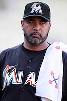 Miami Marlins Manager Ozzie Guillen #13 before a game against the Los Angeles Dodgers at Dodger Stadium on August 24, 2012 in Los Angeles, California. Los Angeles defeated Miami 11-4. (Larry Goren/Four Seam Images)