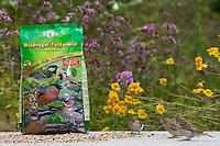 Vogelfütterung, Fütterung am Boden, Bodenfütterung, Körnerfutter, Ganzjahresfütterung, Vögel füttern im ganzen Jahr, Vogelfutter, Gartenvogelfutter, Streufutter der Firma GEVO