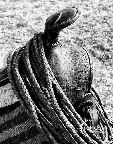 An old leather lariat rope wrapped around a saddle horn.