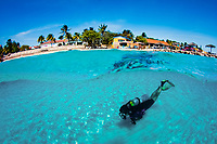 Scuba diver swims over sandy bottom (split view), Bonaire, Netherland Antilles, Caribbean Sea, Atlantic Ocean, MR
