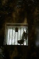 Ehemalige Ahboehrstation der US-Armee auf dem Teufelsberg in Berlin<br />9.5.2013, Berlin<br />Copyright: Christian-Ditsch.de<br />[Inhaltsveraendernde Manipulation des Fotos nur nach ausdruecklicher Genehmigung des Fotografen. Vereinbarungen ueber Abtretung von Persoenlichkeitsrechten/Model Release der abgebildeten Person/Personen liegen nicht vor. NO MODEL RELEASE! Don't publish without copyright Christian Ditsch/version-foto.de, Veroeffentlichung nur mit Fotografennennung, sowie gegen Honorar, MwSt. und Beleg. Konto:, I N G - D i B a, IBAN DE58500105175400192269, BIC INGDDEFFXXX, Kontakt: post@christian-ditsch.de.<br />Urhebervermerk wird gemaess Paragraph 13 UHG verlangt.]