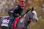 October 28, 2015:  Street Strategy, trained by Randy L. Morse and owned by David M. Clark, exercises in preparation for the Las Vegas Breeders' Cup Dirt Mile at Keeneland Race Track in Lexington, Kentucky on October 28, 2015. Jon Durr/ESW/CSM