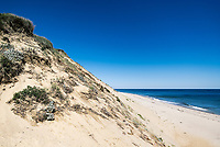 Long Nook Beach, Truro, Cape Cod, Massachusetts, USA.