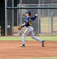 Hayden Cantrelle - 2020 AIL Brewers (Bill Mitchell)