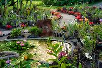 Gardens at .Kiahuna Plantation Gardens. Poipu, Kauai, Hawaii.