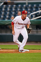 Harrisburg Senators first baseman Shawn Pleffner (17) during a game against the New Hampshire Fisher Cats on June 2, 2016 at FNB Field in Harrisburg, Pennsylvania.  New Hampshire defeated Harrisburg 2-1.  (Mike Janes/Four Seam Images)