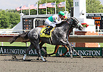 4 July 2010: INFORMED DECISION with jockey Julian Leparoux just beats RINTERVAL and jockey Julio Felix to the finish during the 22nd running of the G3 Chicago Handicap at Arlington Park in Arlington Heights, Illinois.