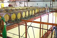 Embres et Castelmaure Cave Cooperative co-operative. Les Corbieres. Languedoc. Barrel cellar. Concrete fermentation and storage vats. France. Europe.