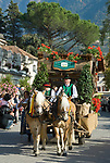 Italien, Suedtirol, Meran: Trachtenumzug waehrend des Traubenfestivals. Trachtengruppe der Suedtiroler Speck Genossenschaft | Italy, South-Tyrol, Alto Adige, Merano: parade in traditional costumes during wine festival, horse-drawn carriage
