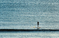 Paddle board surfer heads out to catch a wave, Coast Guard Beach, Cape Cod, Massachusetts, USA