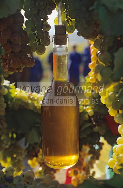 Europe/Hongrie/Tokay/Env Sarospatak: Les vignes du château Megyer - Couronne portant une bouteille de Tokay