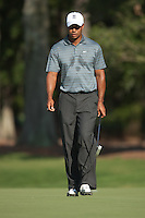 PONTE VEDRA BEACH, FL - MAY 5: Tiger Woods walks on the green of the par 3 8th hole during Tiger's practice round on Tuesday, May 5, 2009 for the Players Championship, beginning on Thursday, at TPC Sawgrass in Ponte Vedra Beach, Florida.