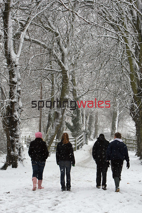 School children enjoying another day off make their way through the snow in Caldicot.<br /> 13.01.10<br /> ©Steve Pope<br /> Sportingwales<br /> The Manor <br /> Coldra Woods<br /> Newport<br /> South Wales<br /> NP18 1HQ<br /> 07798 830089<br /> 01633 410450<br /> steve@sportingwales.com<br /> www.fotowales.com<br /> www.sportingwales.com<br /> ©Steve Pope<br /> Sportingwales<br /> The Manor <br /> Coldra Woods<br /> Newport<br /> South Wales<br /> NP18 1HQ<br /> 07798 830089<br /> 01633 410450<br /> steve@sportingwales.com<br /> www.fotowales.com<br /> www.sportingwales.com