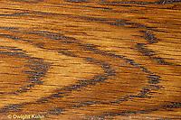TT16-007b  Wood section - tangential - Oak