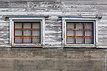 Dirty windows in old, white, peeling dairy barn with concrete foundation and peeling paint.  Nisqually National Wildlife Refuge, Washington State