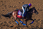 November 3, 2020: Mean Mary, trained by trainer H. Graham Motion, exercises in preparation for the Breeders' Cup Filly & Mare Turf at Keeneland Racetrack in Lexington, Kentucky on November 3, 2020. John Voorhees/Eclipse Sportswire/Breeders Cup/CSM